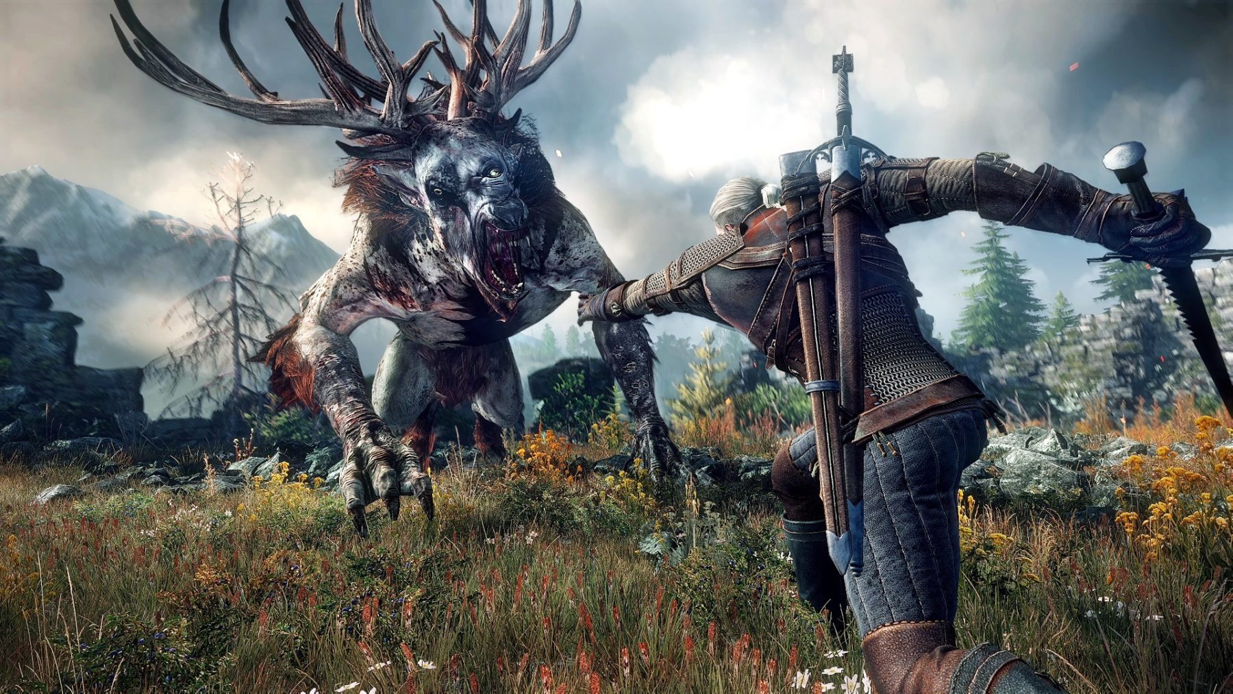 witcher wild hunt review