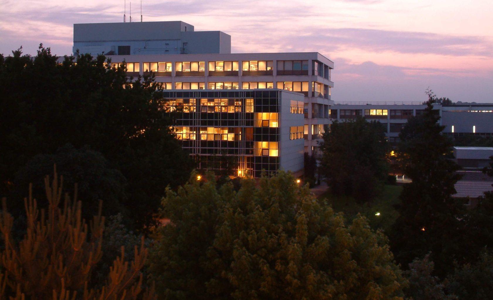 warwick library; warwick university