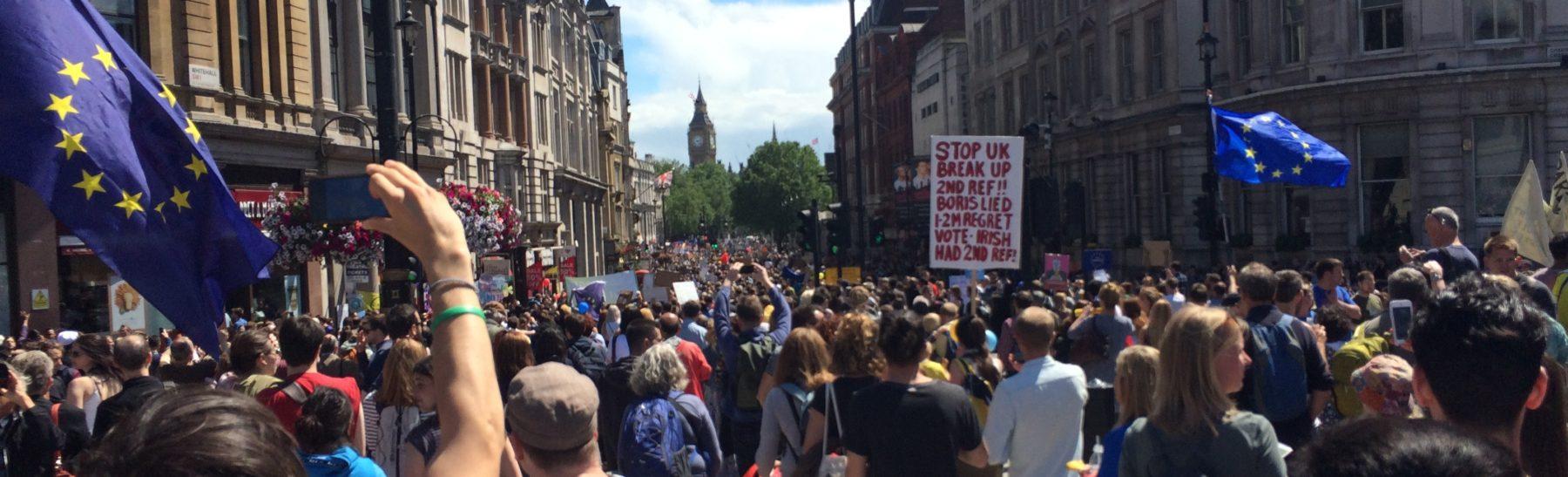 EU referendum Brexit protest