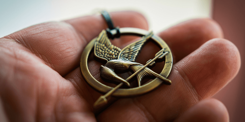 Hand holding hunger games mockingjay pin