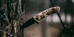 Knife stuck in a tree - Goodall