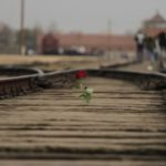 Auschwitz tourism