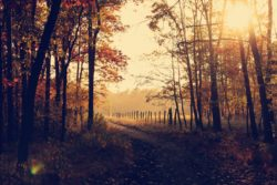 A guide to autumnal getaways around the United Kingdom