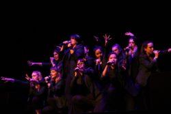 The Decibelles perform live