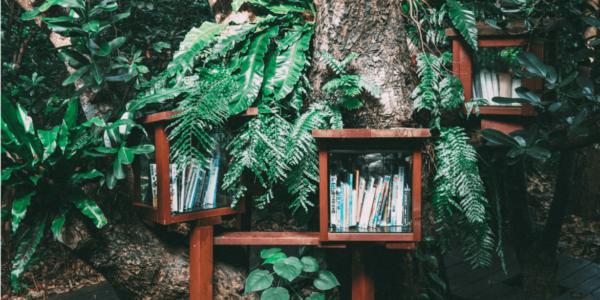 books in nature - book day