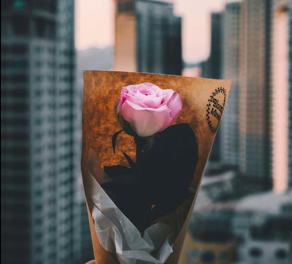 Image: Love/Unsplash