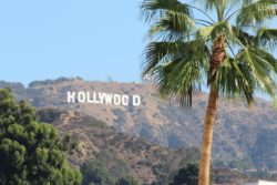 Picture of the Hollywood Hills