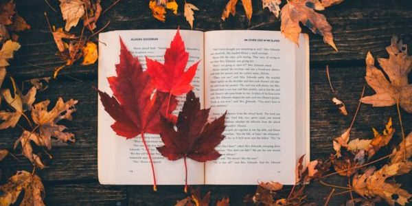 book with leaves tree