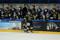Image: Panthers Images